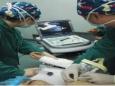 麻醉可视化技术培训体会